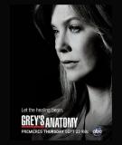 Grey's Anatomy - S7