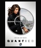 Quantico - S3 (2018)