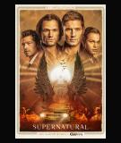 Supernatural - S15 (2019)