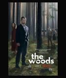 W głębi lasu - S1 (2020)