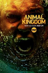 Animal Kingdom - S3 (2018)