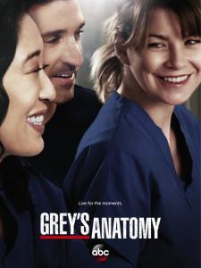 Grey's Anatomy - S10 (2013)
