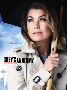 Grey's Anatomy - S12 (2015)